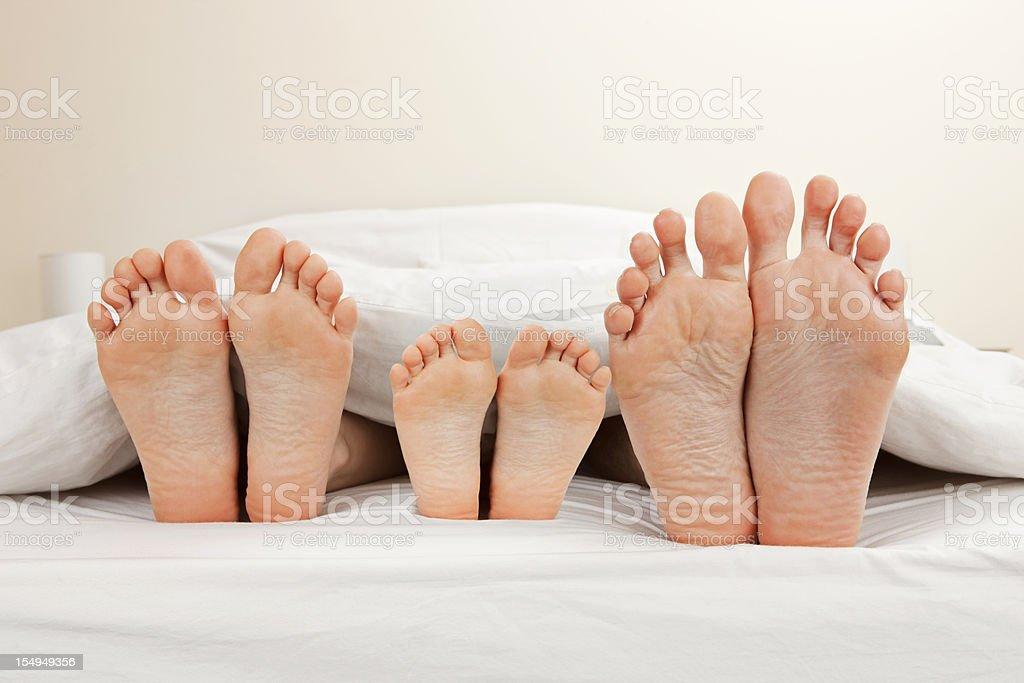 Family feet stock photo
