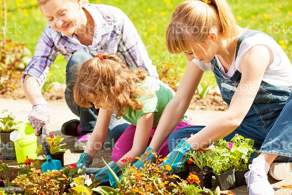 Family Gardening Together Outdoors royalty-free stock photo