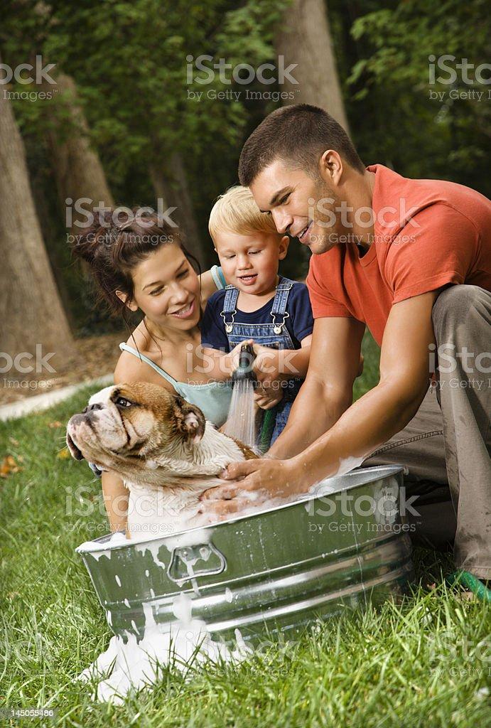Family giving dog a bath. stock photo