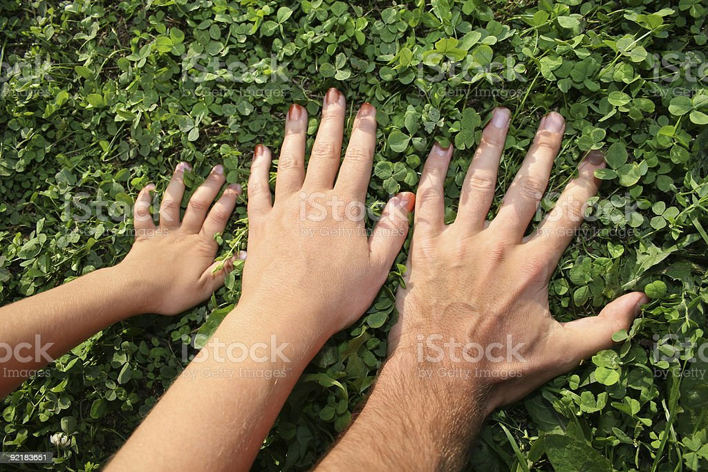 family hands stock photo