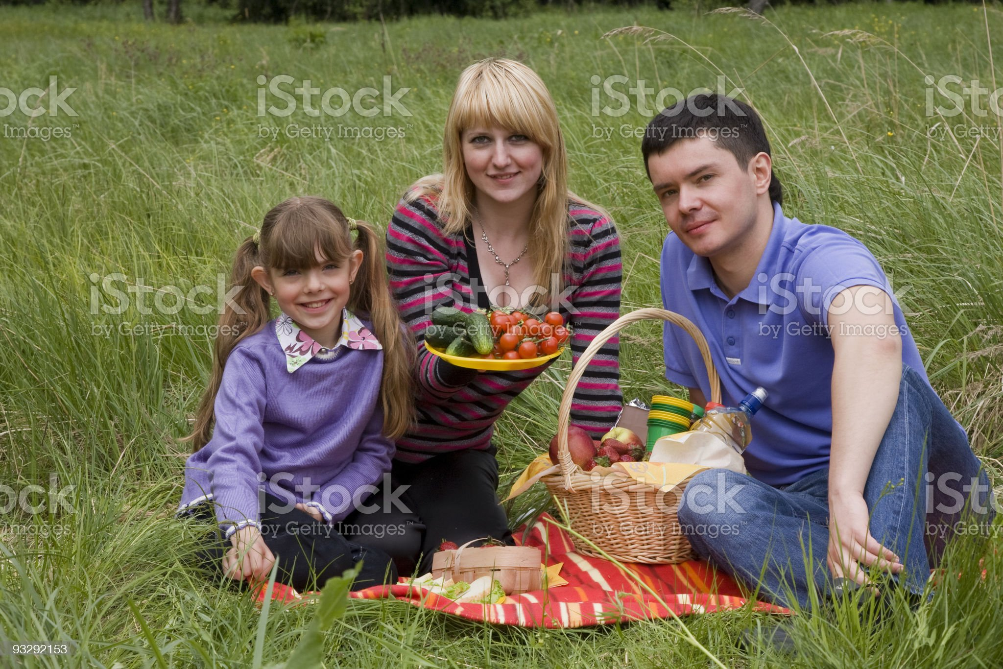 Family having picnic in park royalty-free stock photo