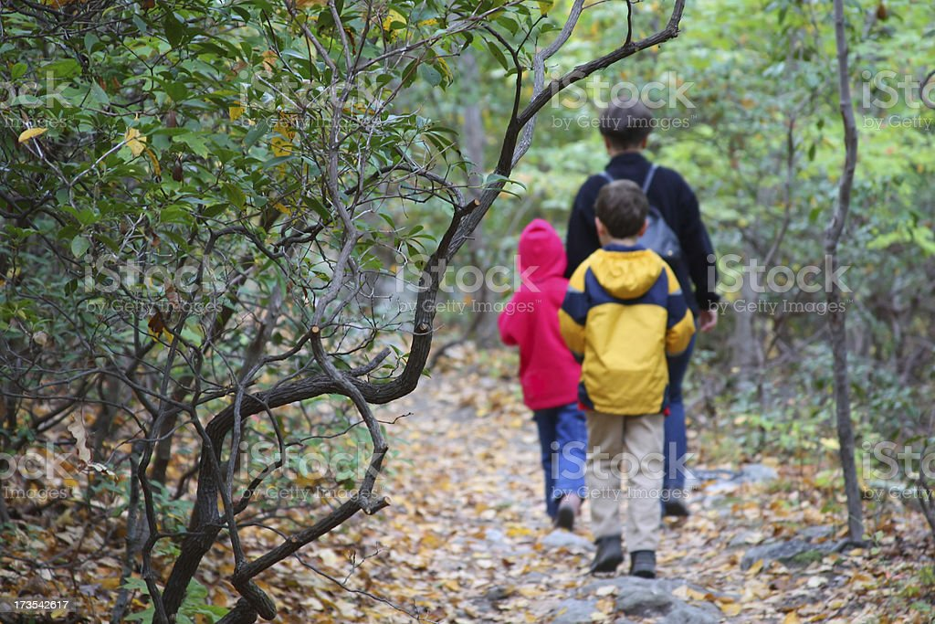 Family hiking in the forest (mother and two young children) royalty-free stock photo