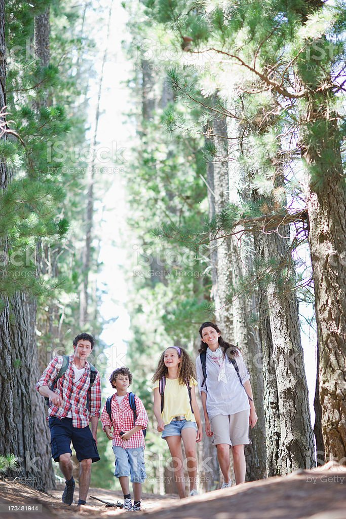 Family hiking in woods stock photo