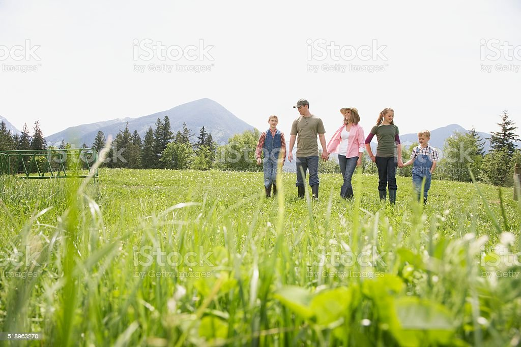 Family holding hands on farm stock photo