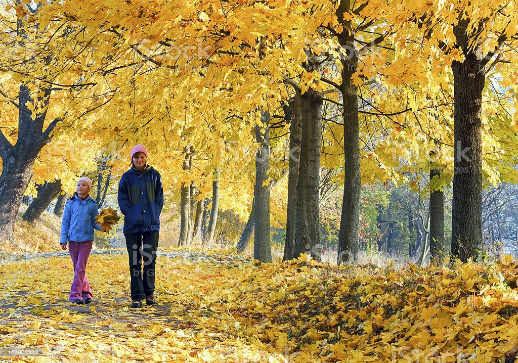 Family in autumn maple park royalty-free stock photo