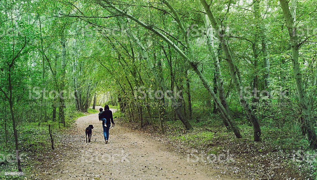 Family in the forest stock photo