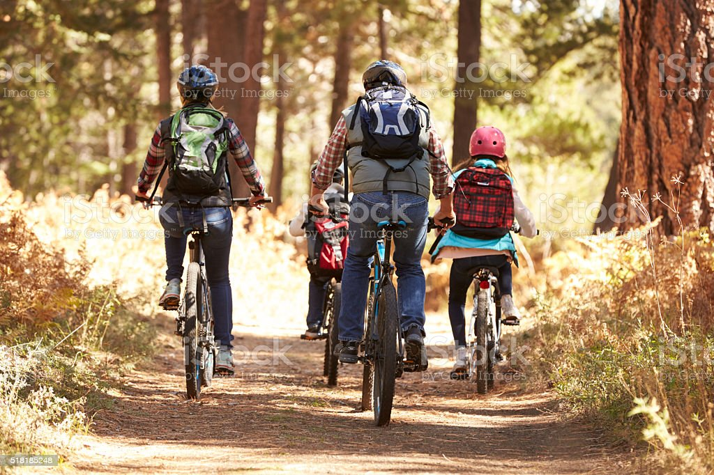 Family mountain biking on forest trail, back view stock photo