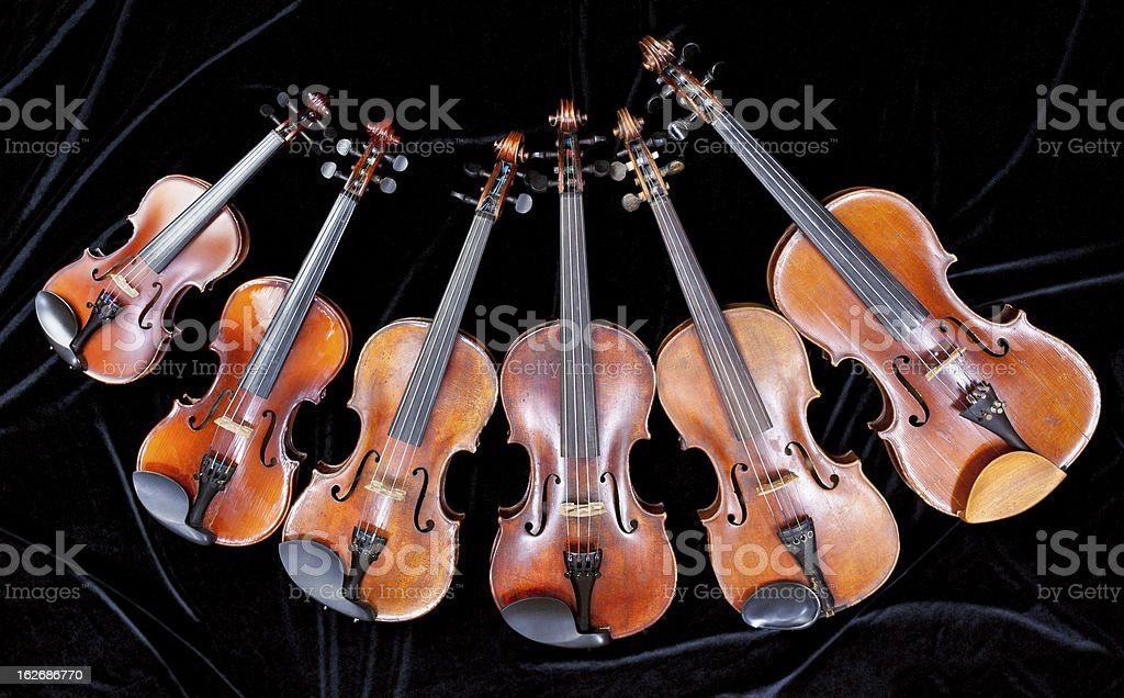 family of different sized violins on black royalty-free stock photo