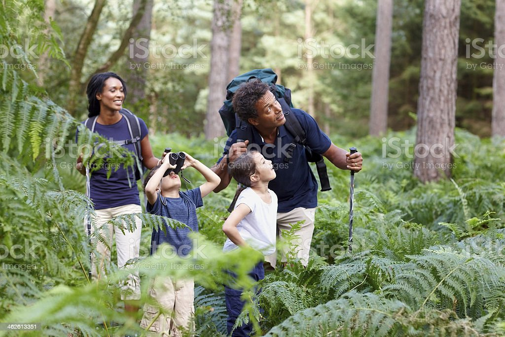 Family of four hiking in countryside stock photo
