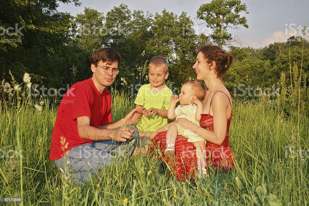 family of four on meadow 2 stock photo