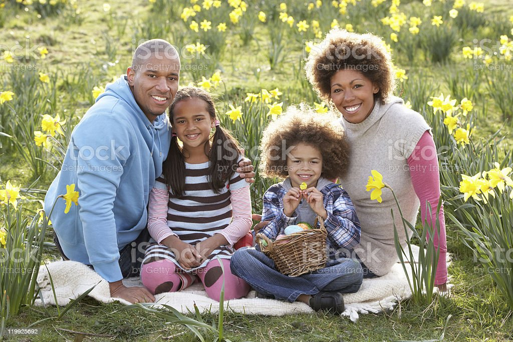 Family of four posing for portrait among field of daffodils royalty-free stock photo