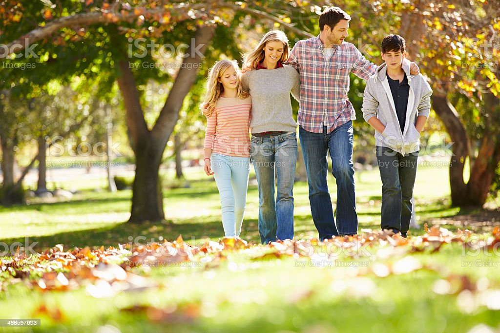 Family of four walking in autumn leaves at park stock photo