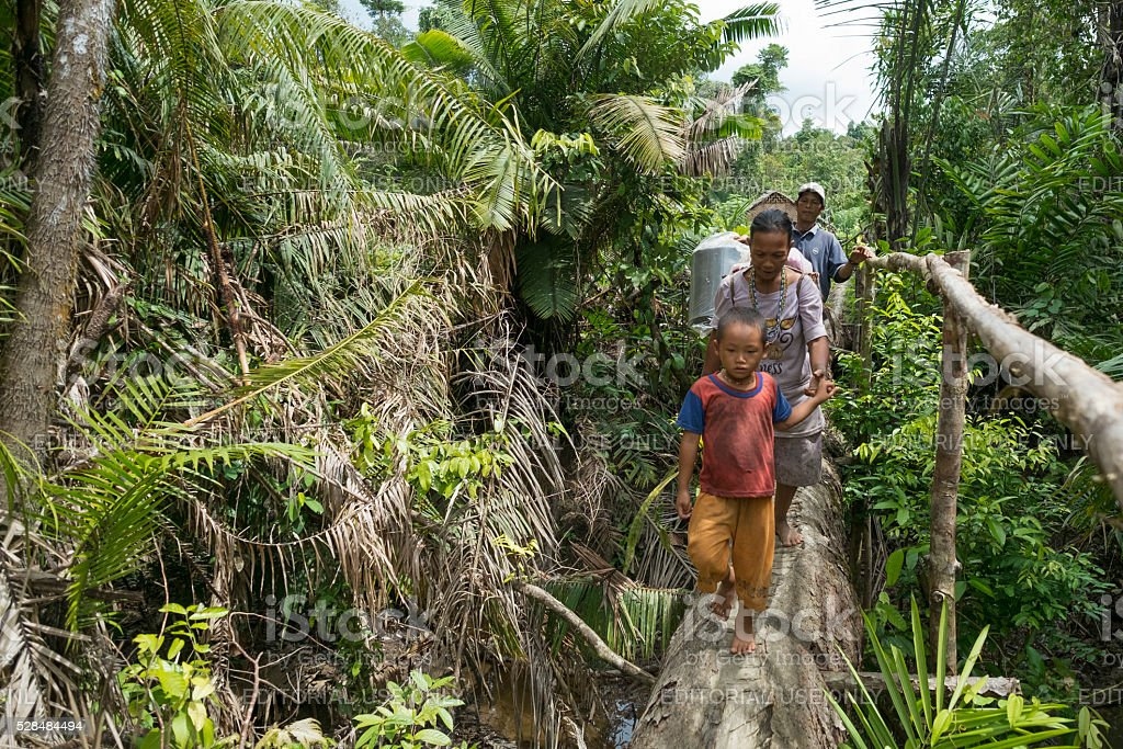 Family of Mentawai tribes crossing the wooden bridge stock photo