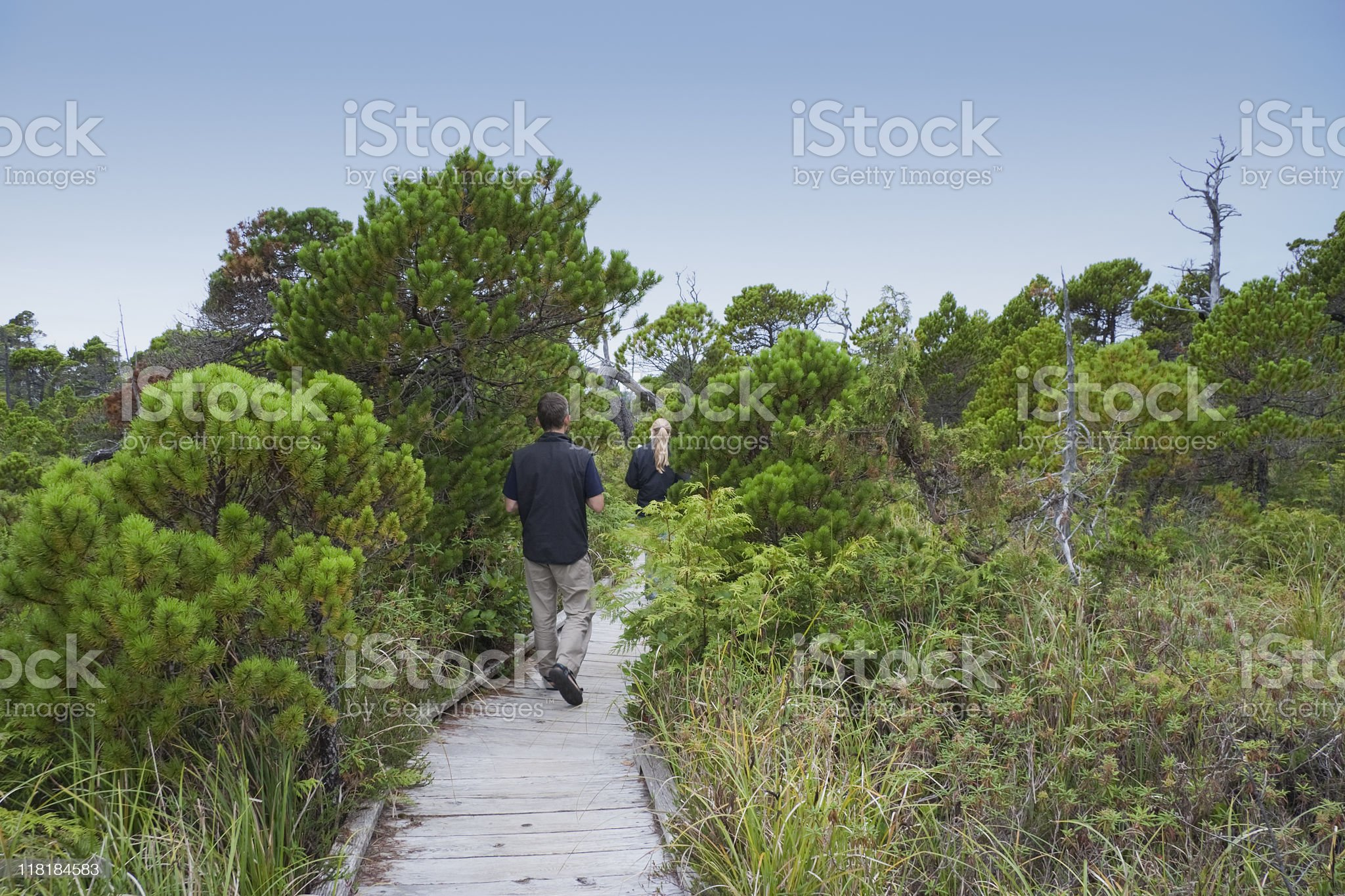 Family on Boardwalk in a Bog royalty-free stock photo