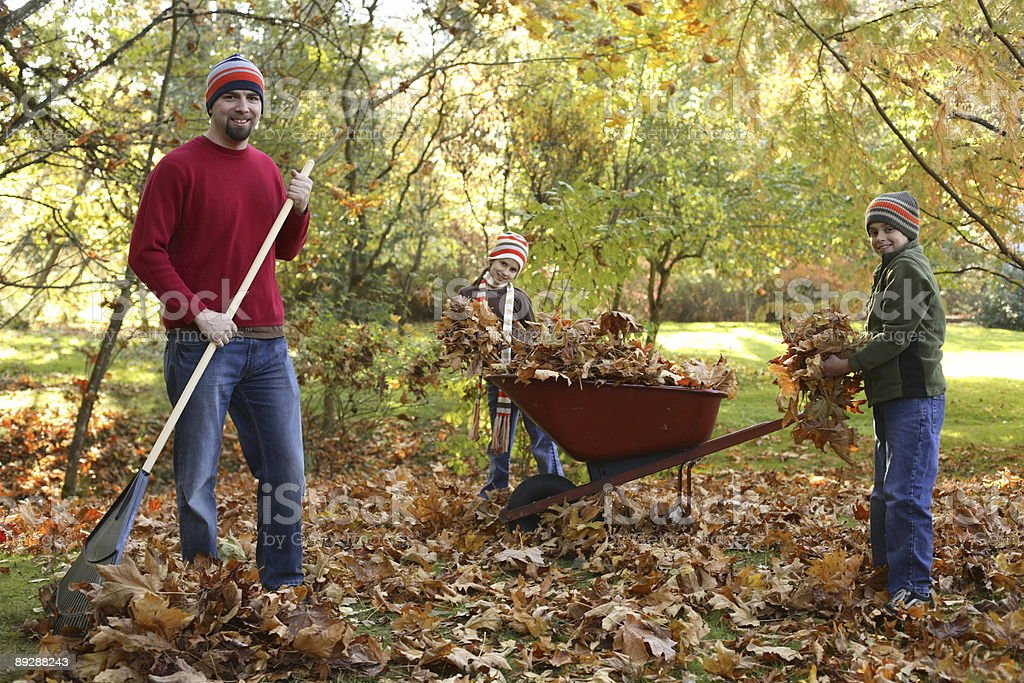 Family picking up fall leaves stock photo