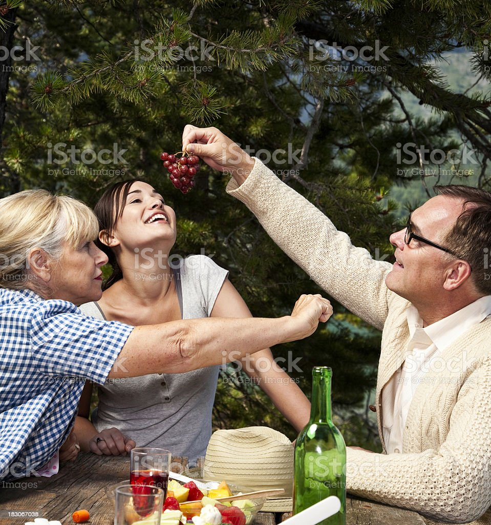 Family Picnic Drama royalty-free stock photo