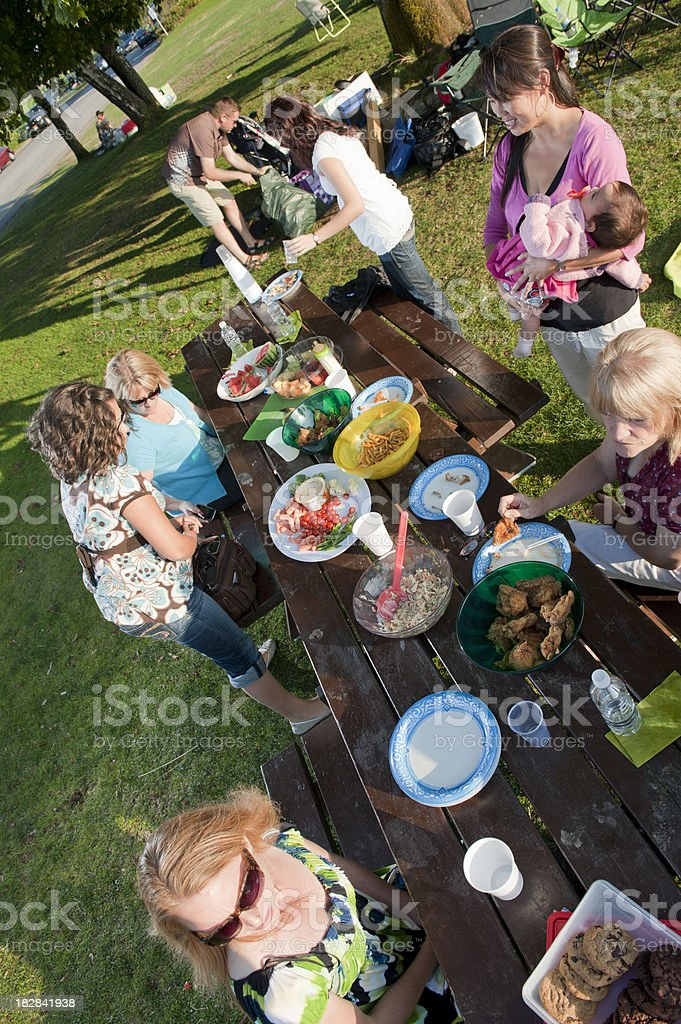 Family Picnic From Above royalty-free stock photo