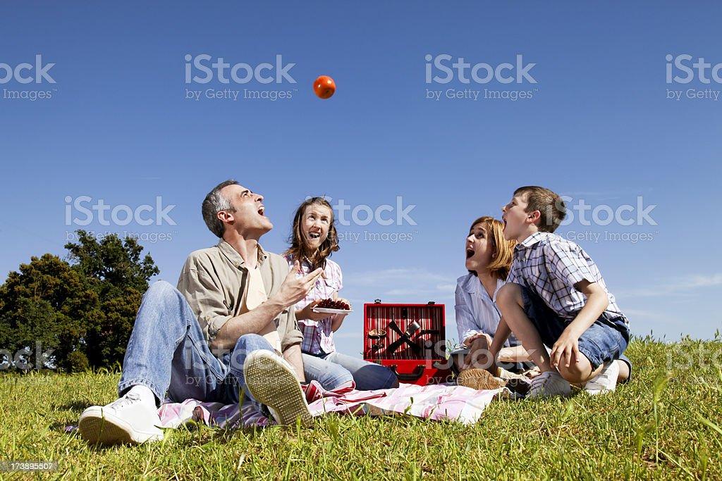 Family Picnic Having fun royalty-free stock photo
