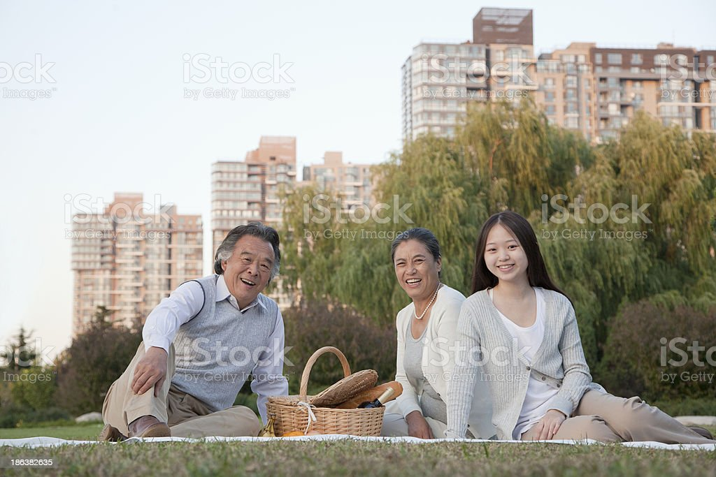 Family picnic in the park, portrait royalty-free stock photo