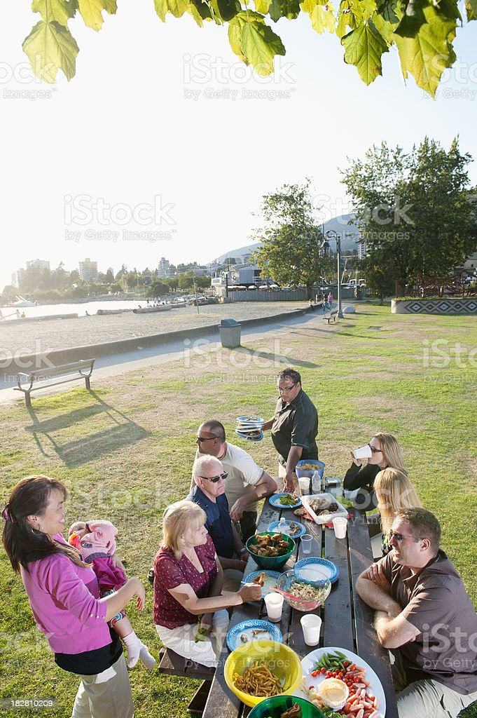 Family Picnic - Wide View stock photo