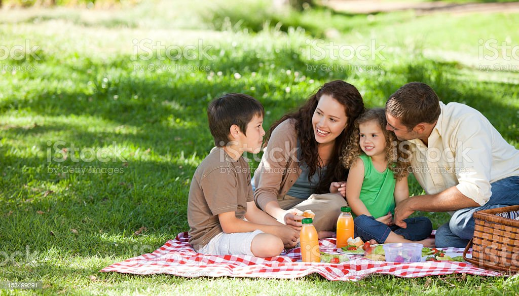 Family  picnicking together stock photo