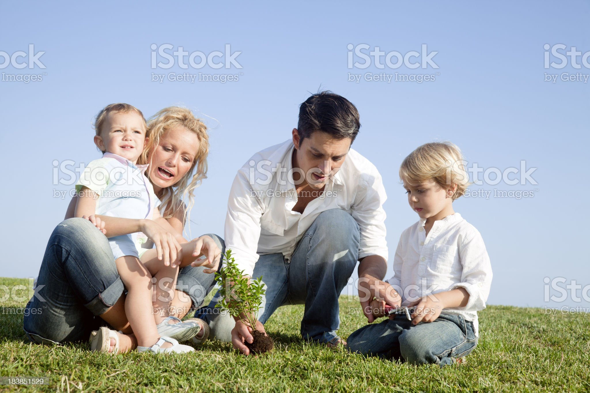 Family planting a tree royalty-free stock photo