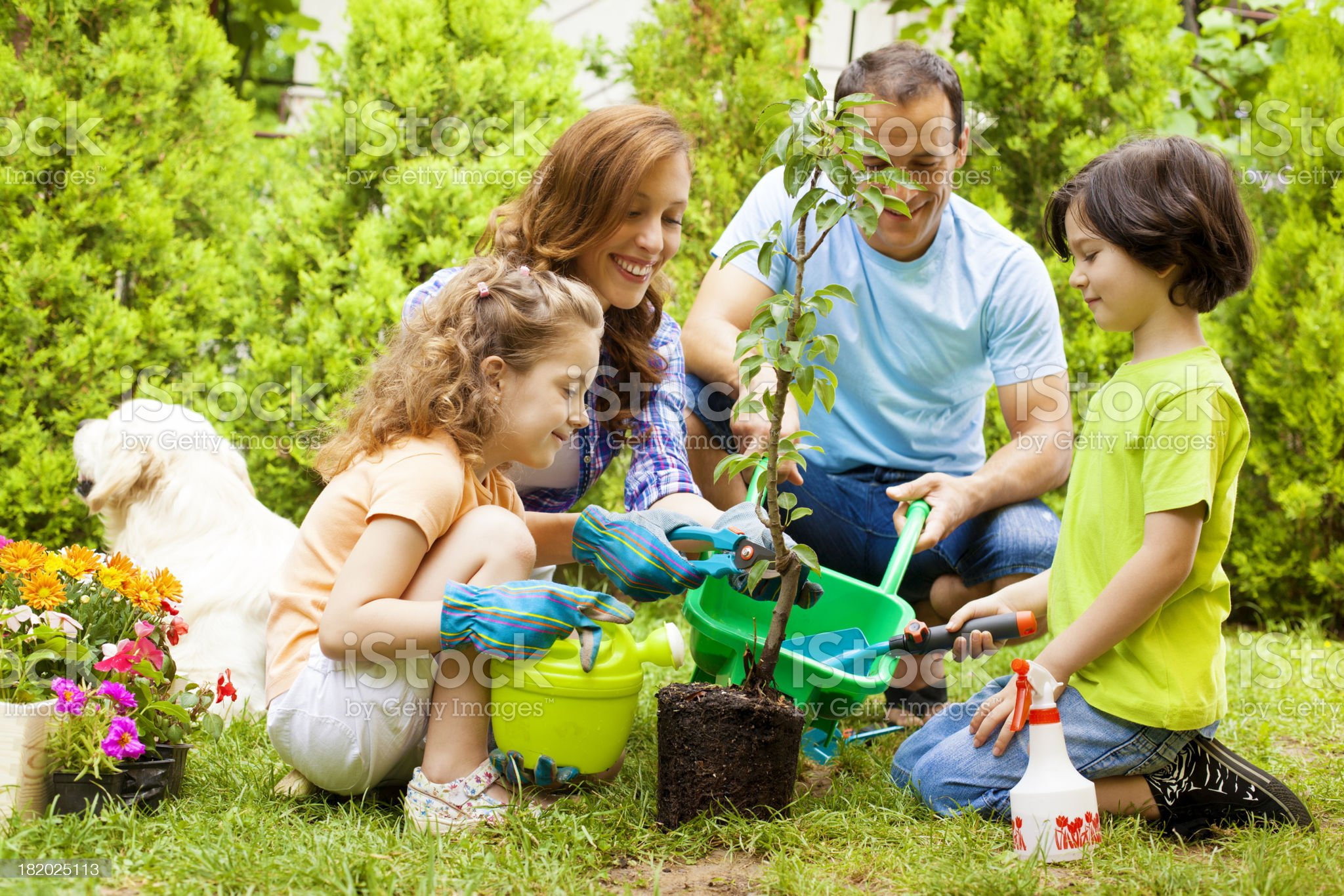 Family Planting Tree Together. royalty-free stock photo