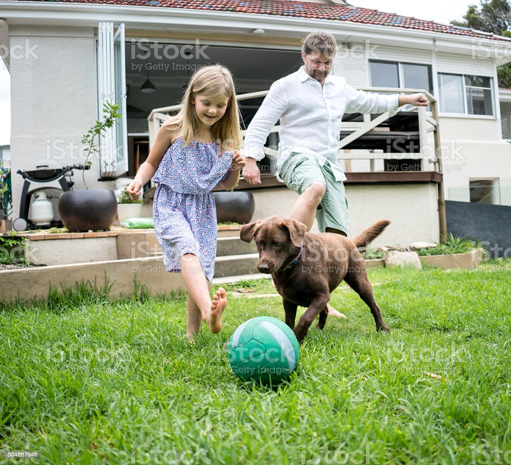 Family playing football with the dog stock photo
