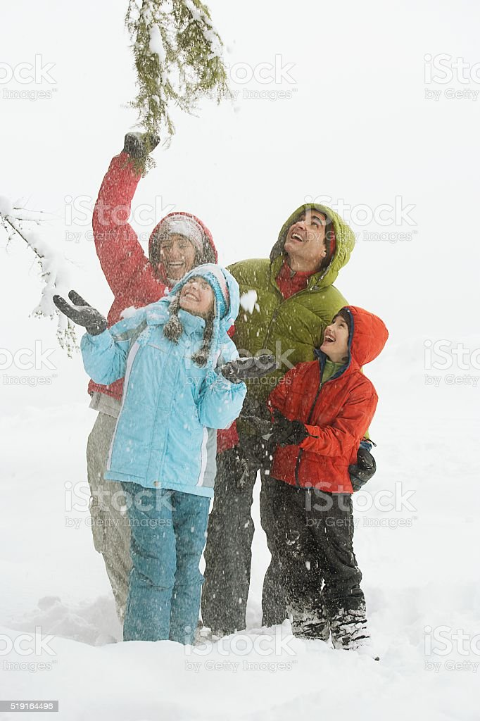 Family playing in the snow stock photo