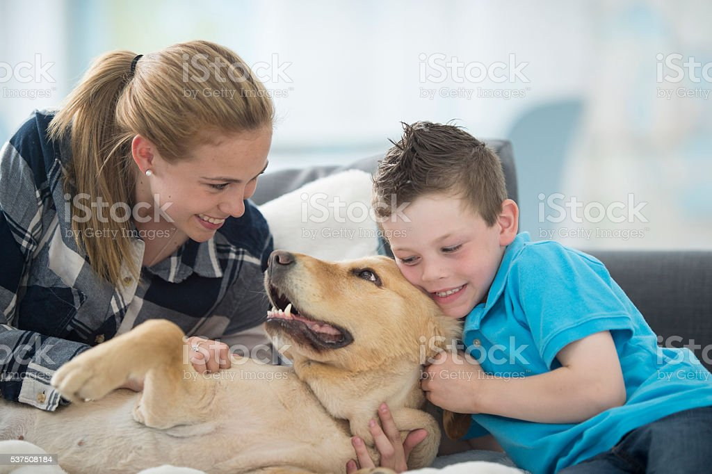 Family Playing with Their Dog stock photo