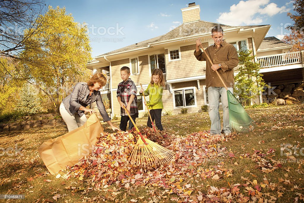Family Raking Leaves Together in Autumn stock photo
