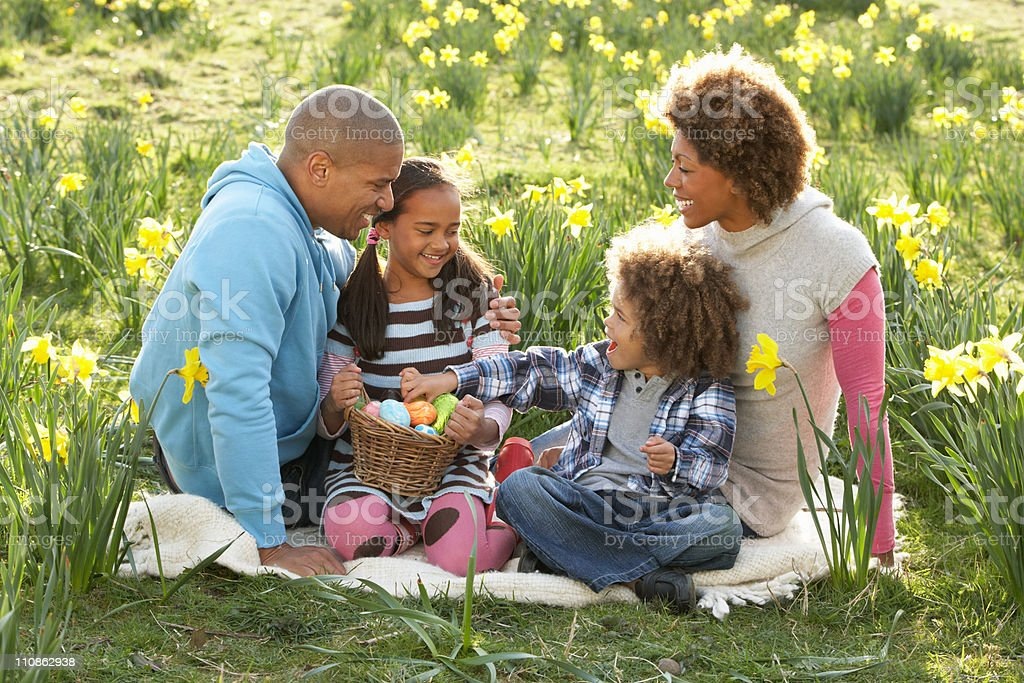 Family Relaxing In Field Of Spring Daffodils royalty-free stock photo