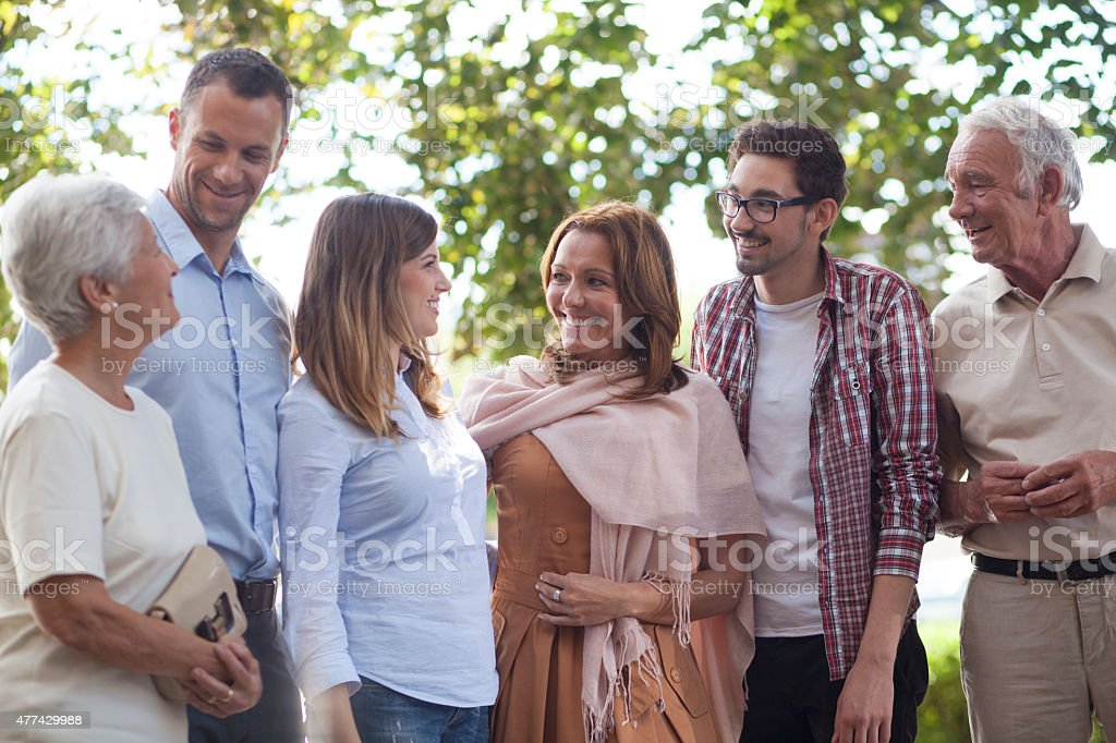 Family reunion outdoors stock photo