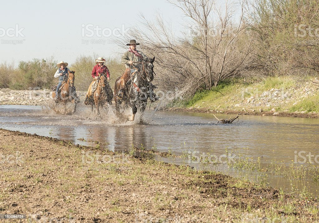 Family Running horses up the river stock photo