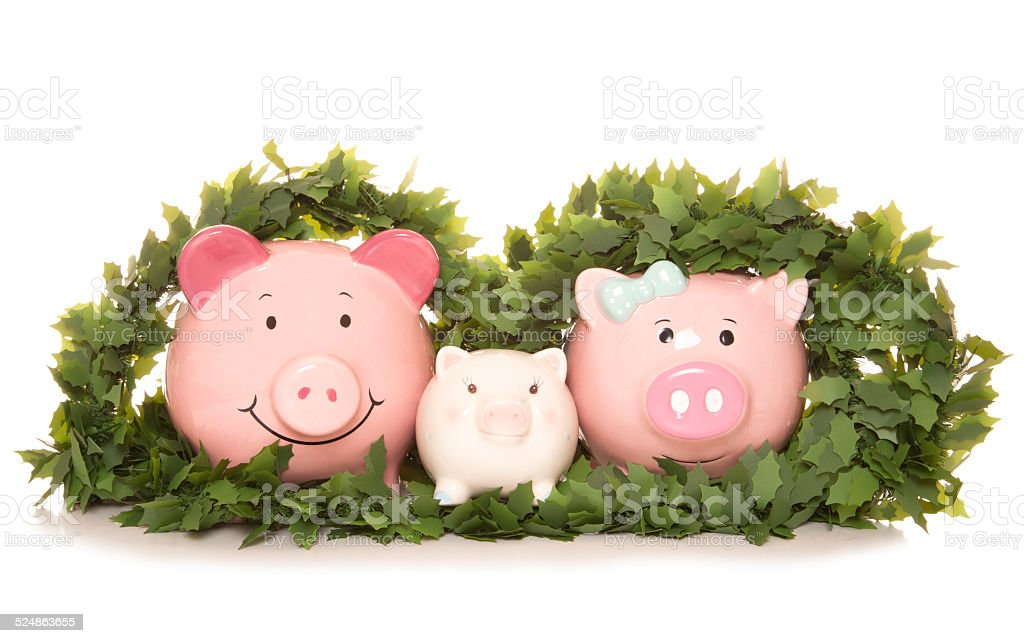 family saving money at christmas stock photo