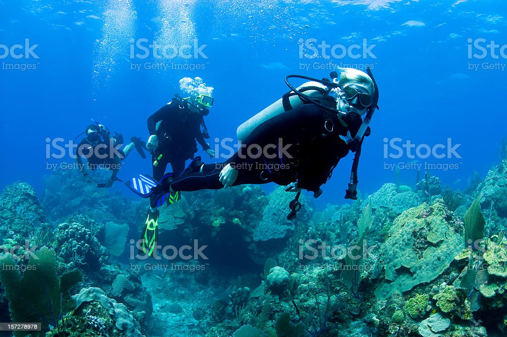 Family Scuba Diving stock photo