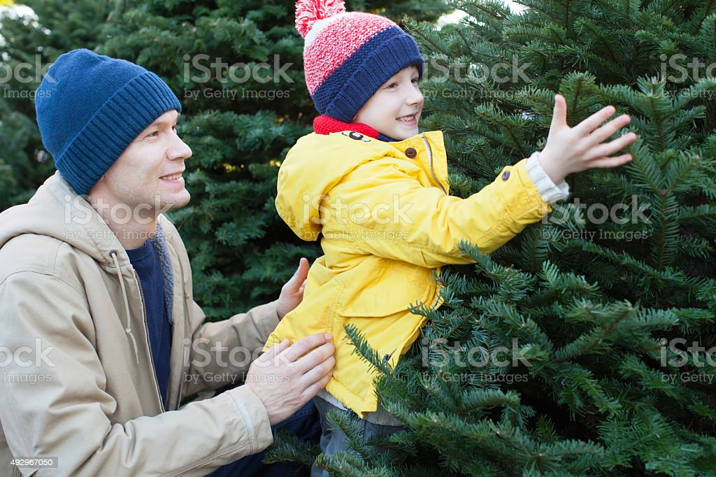 family shopping for christmas tree stock photo