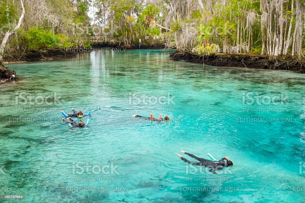 Family Snorkeling at Spring in Crystal River Florida USA stock photo