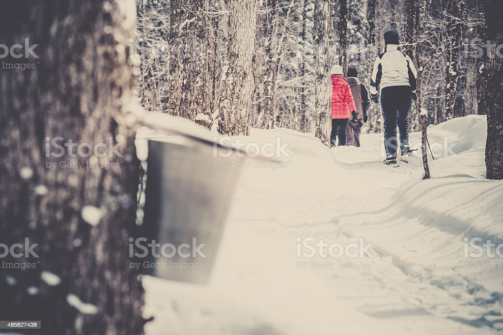 Family Snowshoeing in Winter Forest stock photo