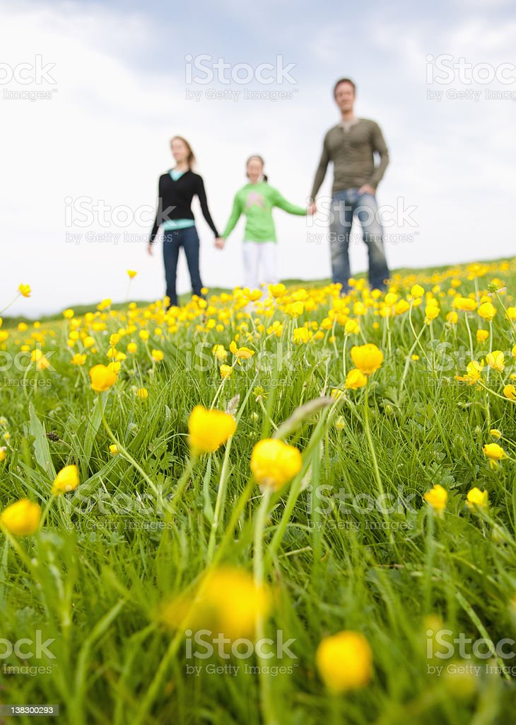 Family standing in field of flowers stock photo
