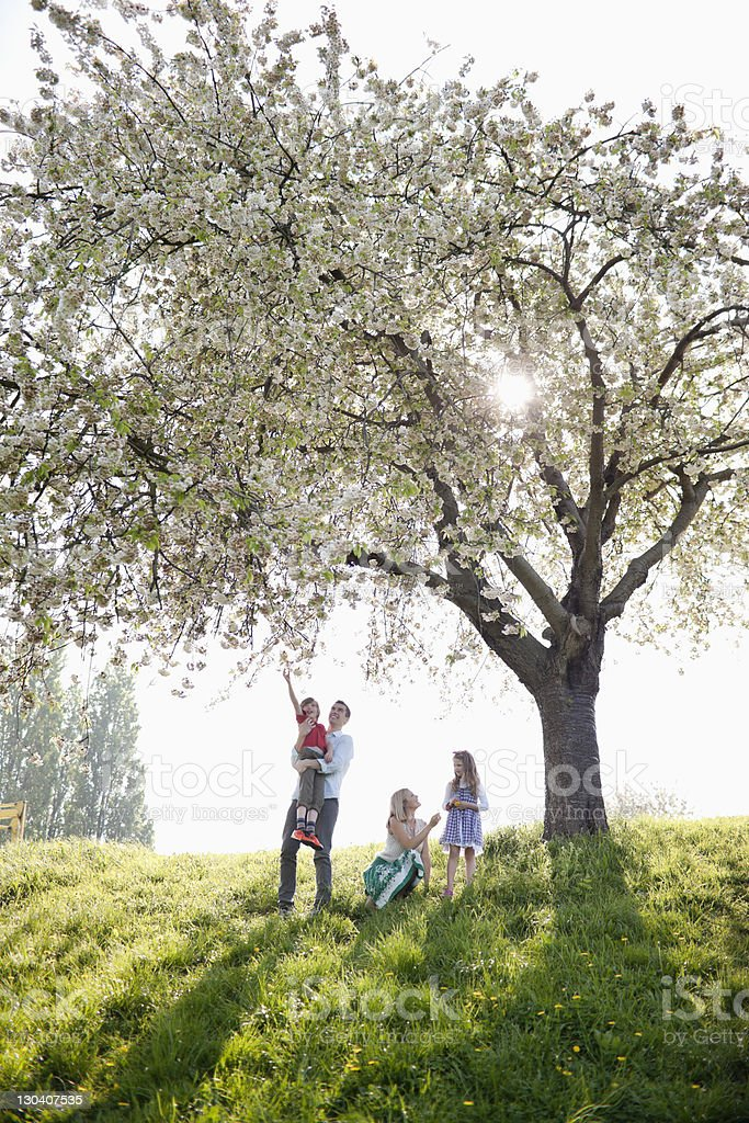 Family standing in park together royalty-free stock photo