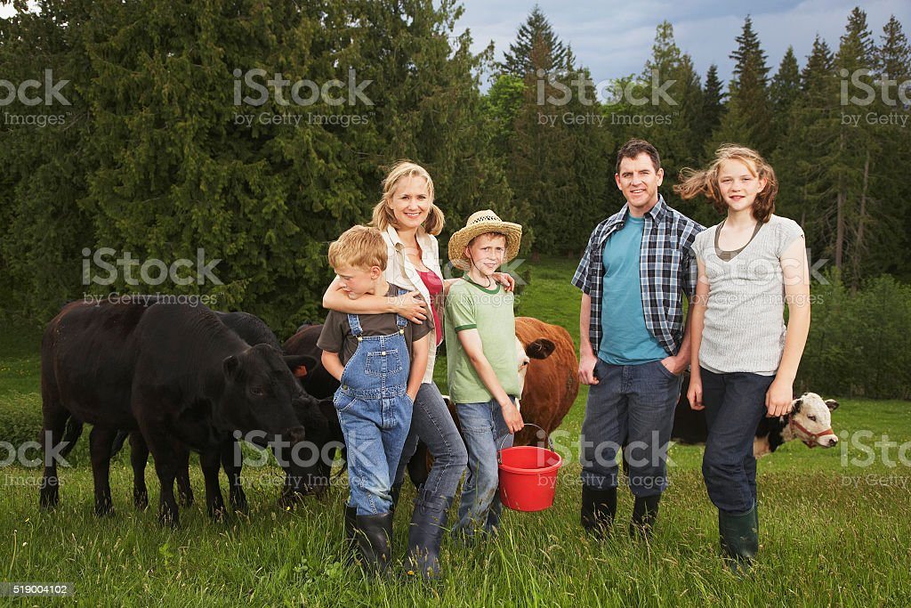 Family standing near cattle on farm stock photo