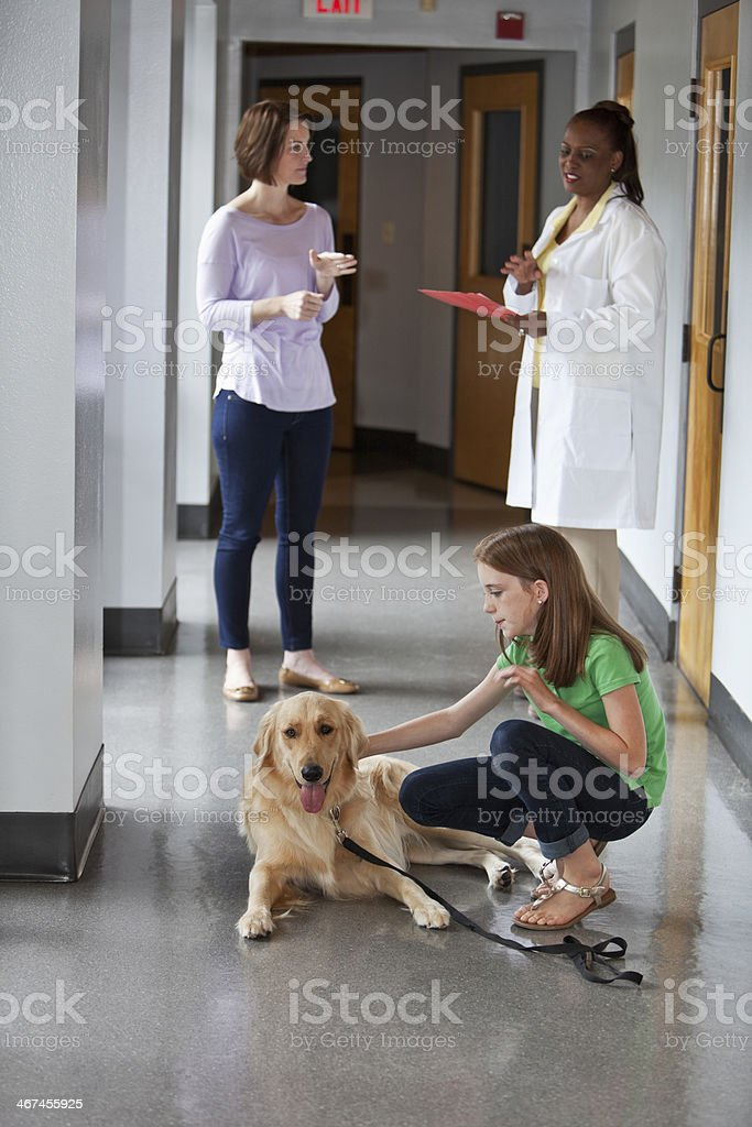 Family taking pet to the vet stock photo