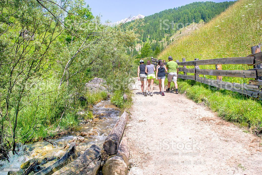 family trekking summer mountain trail stock photo