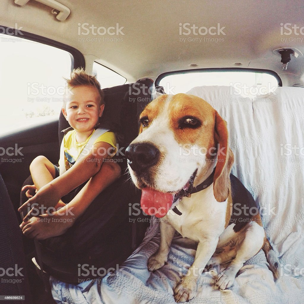 Little boy is traveling on the back sit, alongside with his dog //...