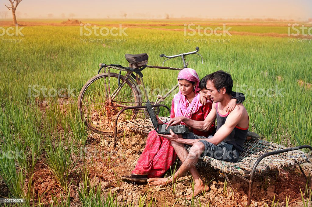 Family using Laptop in the wheat field stock photo