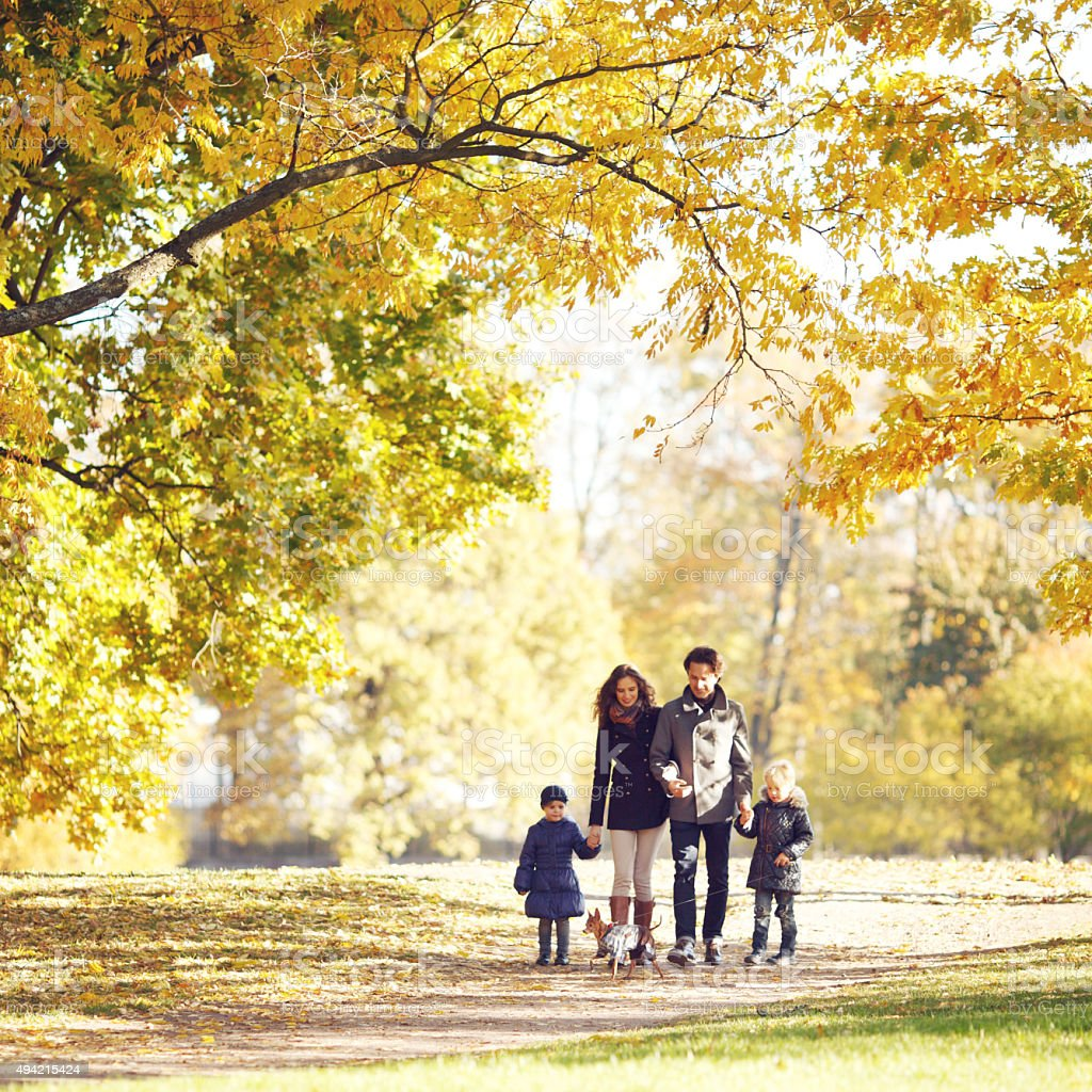 Family walking in autumn park stock photo