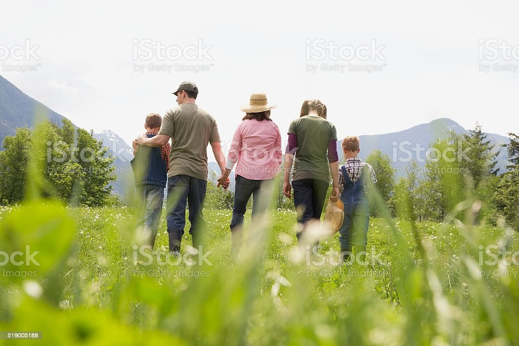 Family walking in field stock photo
