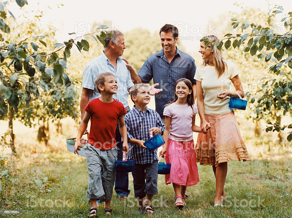 Family walking in orchard royalty-free stock photo