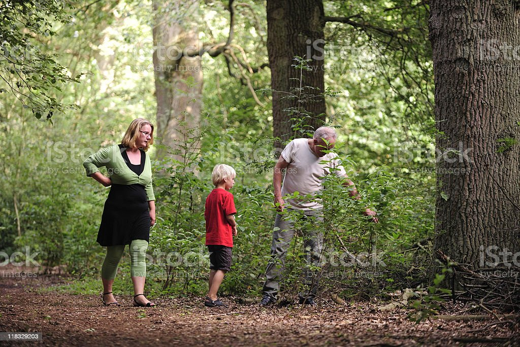 Family walking in the woods during summer royalty-free stock photo